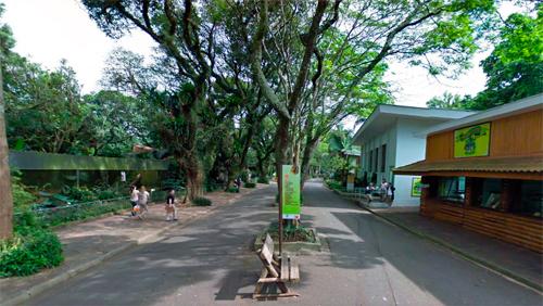 Zoológico de São Paulo (Google Maps/Reprodução)